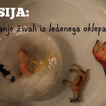 Misija: reševanje živali iz ledenega oklepa