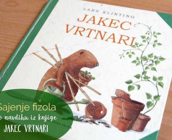 Sajenje fižola po navdihu iz knjige Jakec vrtnari
