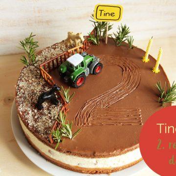 Tinetov 2. rojstni dan